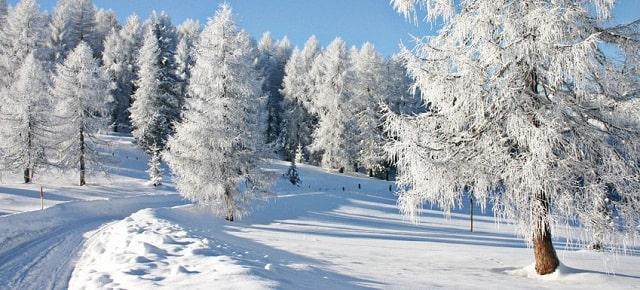 tại sao nói đới lạnh là vùng hoang mạc lạnh của trái đất